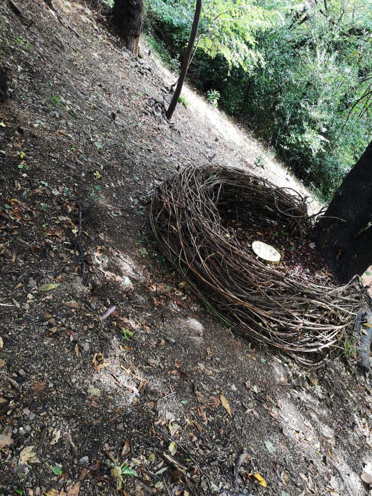 ITINERARIO 1 - Mya Lurgo, Annidarsi. Liane, corteccia, tronco dorato con materiale acrilico. Ottobre 2020