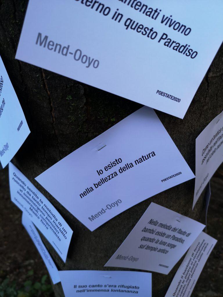 ITINERARIO 1 - POESTATE2020, L'albero della poesia: dalla steppa della Mongolia al bosco del Malcantone. Ottobre 2020
