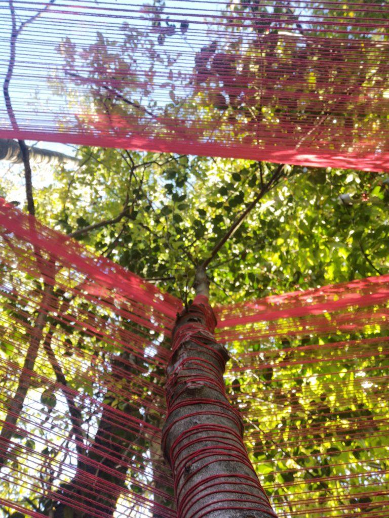 Natascia Melis Three Trees. Performance attorno a tre alberi. Tessitura di un filo in cotone, tinto con colori vegetali. Ottobre 2020