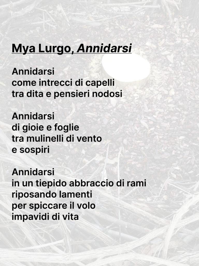 Annidarsi-poesia