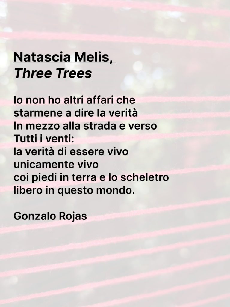 Natascia Melis-poesia